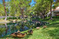 SPRINGS AT SPANISH TRAIL Condos For Sale